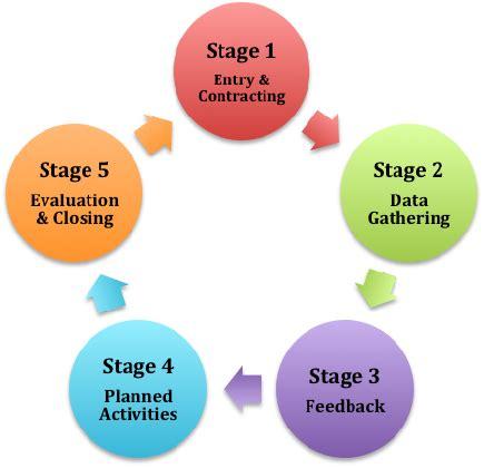Nursing Process of Adpie Essay - 477 Words